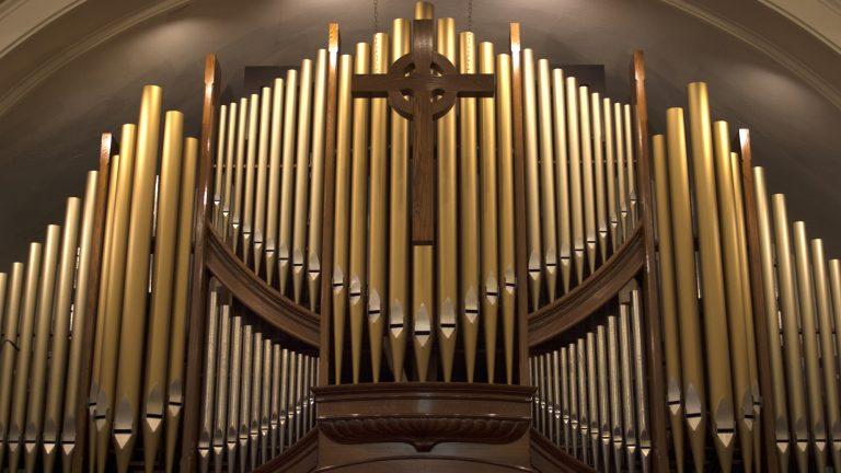 Organ-cropped2